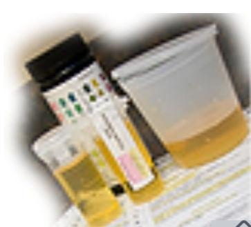 DOT AND Non-DOT Drug Screens.
