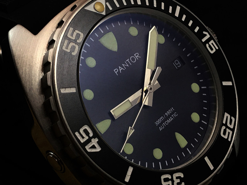 Sealion Dive Watch