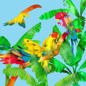 card Macaws low res.jpg