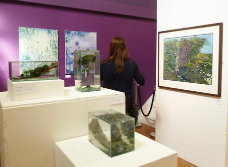 Wandering Exhibition