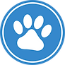 Pet insurance in Spain, medical insurance for  your dog, cat or horse