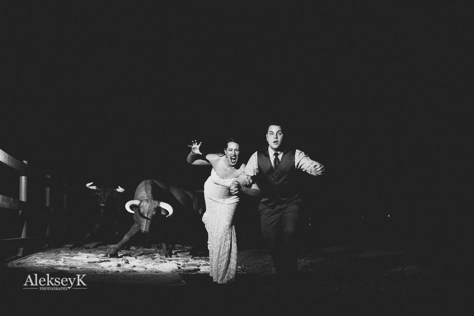toro-run-winery-wedding-photos-ovid-ny-81