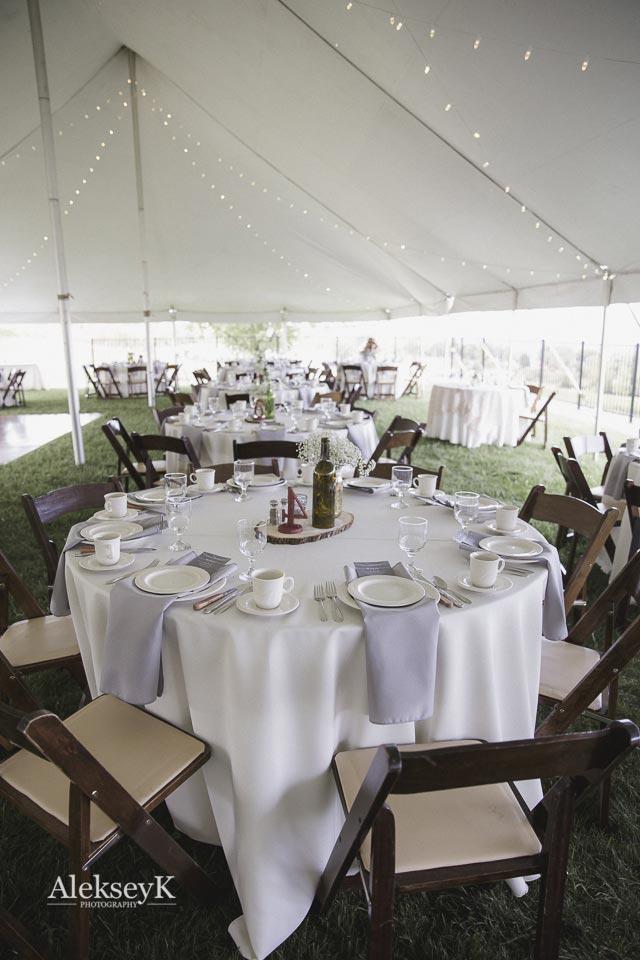 toro-run-winery-wedding-photos-ovid-ny-64