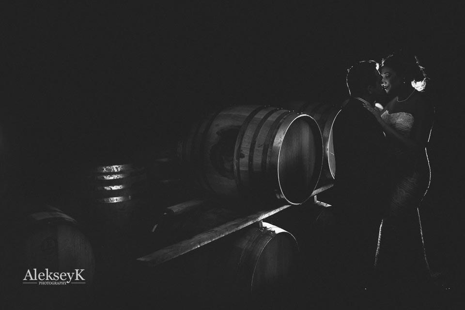 toro-run-winery-wedding-photos-ovid-ny-49