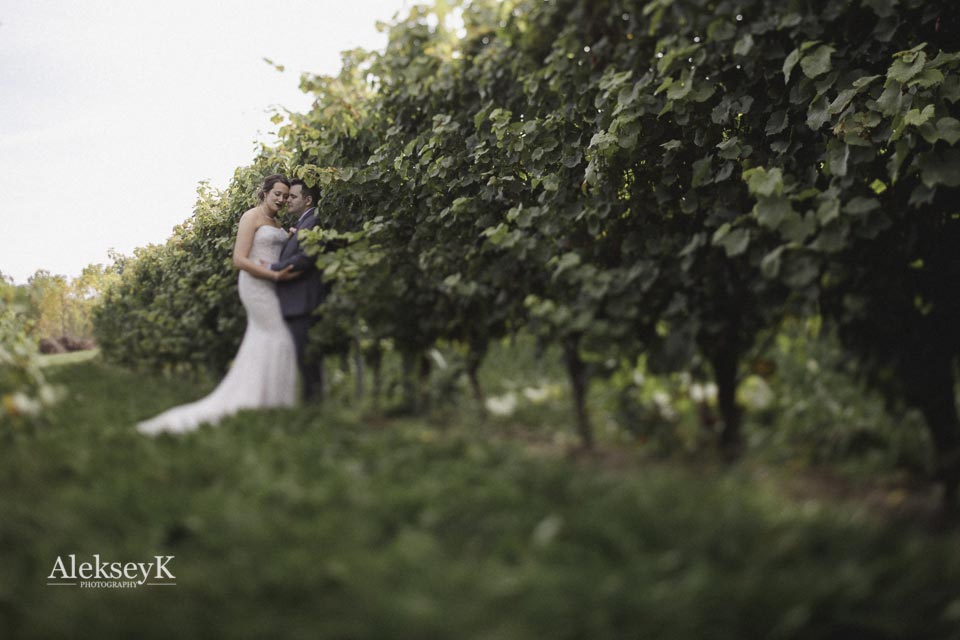toro-run-winery-wedding-photos-ovid-ny-46