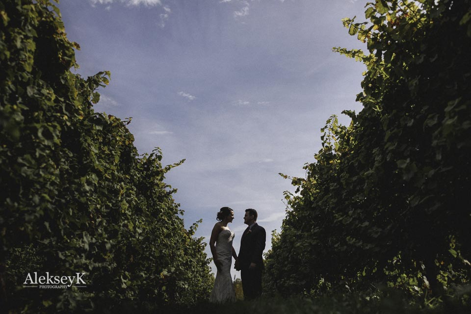 toro-run-winery-wedding-photos-ovid-ny-48