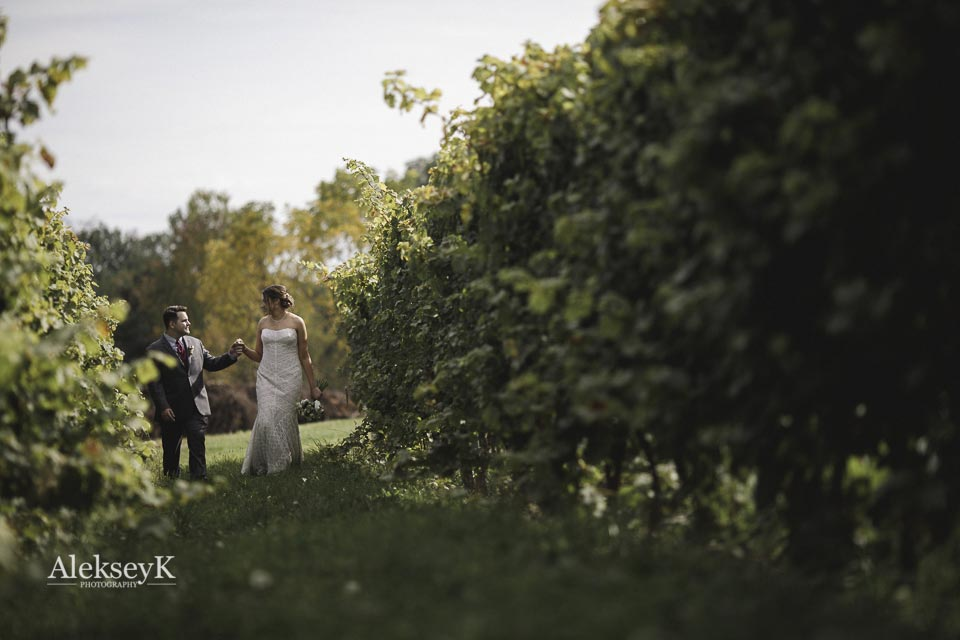 toro-run-winery-wedding-photos-ovid-ny-43