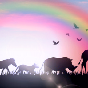 Stop Hurting the Animals: A Plea from Heaven