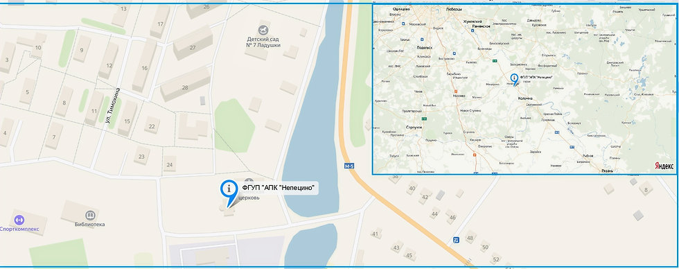 map_N_edited_edited.jpg