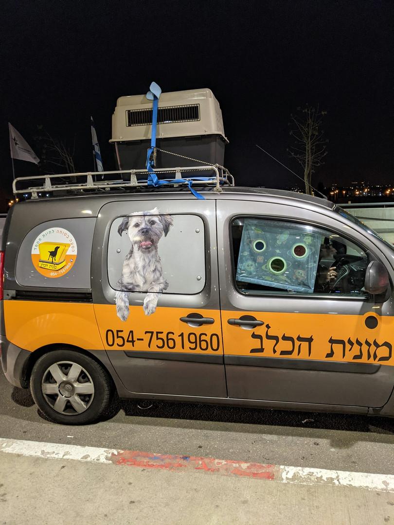 """מונית הכלב בנתב""""ג"""