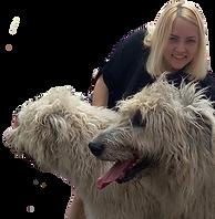 """/הסעה לכלב/הסעה לכלבים/הסעות כלבים/הסעות לכלבים/הסעת בעלי חיים /הסעות לבעלי חיים/הסעות בעלי חיים/מונית שלוקחת כלבים/ מונית עם כלב/מונית ידידותית לכלבים/רילוקיישן עם כלב/מונית לחתול/הסעה לוטרינר /אמבולנס לחיות/הסעת כלב לנתב""""ג/מונית שלוקחת חתולים /מונית הכלב/הסעה לחיות מחמד/מונית-הכלב/אמבולנס לכלבים/אמבולנס לכלב/אמבולנס לחיות"""