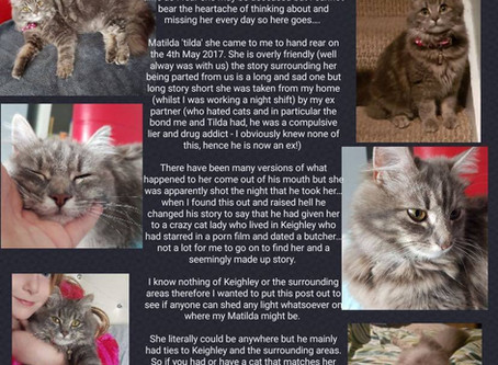 Have you seen Matilda? Possibly in Keighley.