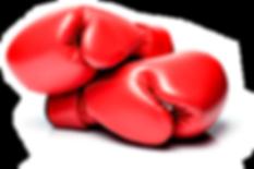 kickboxing-gloves.png