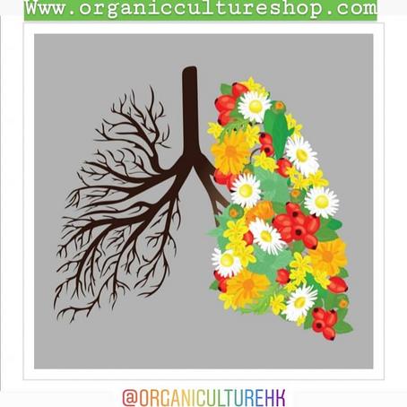 好的水果,吃了可以潤肺,增强心肺功能,保護肺部健康!