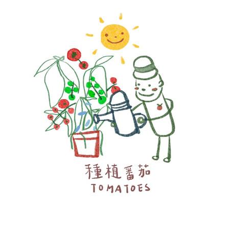 開心有機生活 - DIY番茄農場