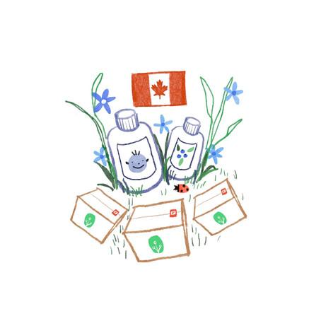 為什麼選擇加拿大品牌的保健品?