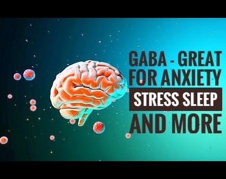 你聽過 Gaba - (γ-氨基丁酸)嗎 ?