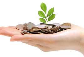 Image of a hand holding coins with link to our fundraising page