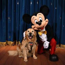 Brinkley & Mickey