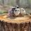 Thumbnail: Easter Egger/Olive Eggers