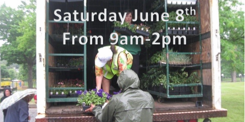 Annuals & Veggies Plant Giveaway