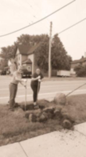 tree planting_edited_edited.jpg