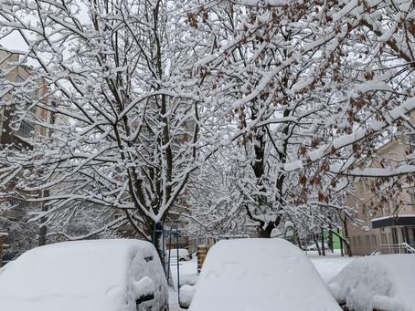 Когда выпадает снег, вспоминаешь прекрасные моменты!