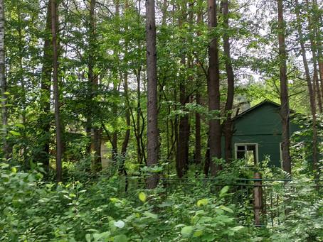 #1 Заброшенный лагерь в Смолевичах