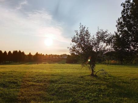 #12 Лошицкий парк и усадьба (Минск)
