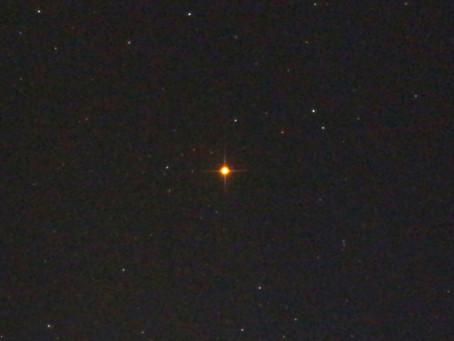 エジプトの星