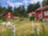 Artseeoceanhouses.jpg