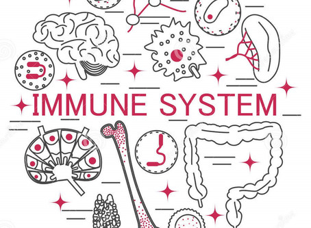 The Immune System and how it can be enhanced. A view perspective of Western and Chinese Medicine.