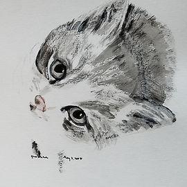 kitty, Succhi, May 3, 2018 (sold).jpg