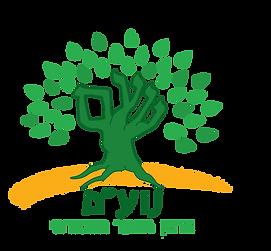 לוגו נועם ארגון.png