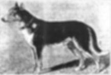 Berger_Picard_1890.jpg
