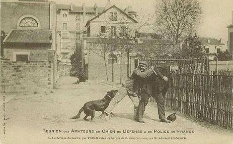 Historic Beauc Photo.jpg