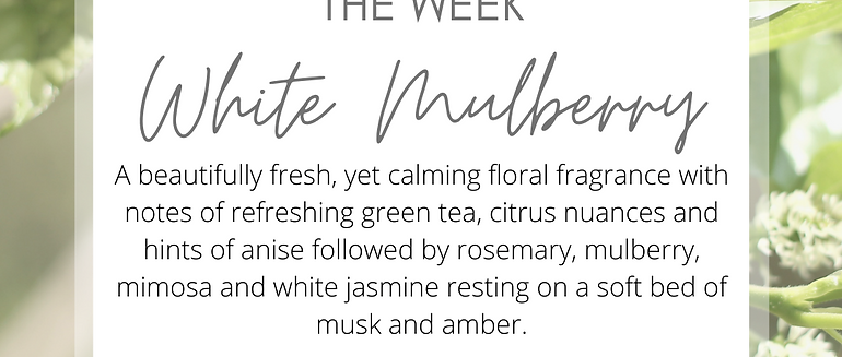 Fragrance of the Week - Wax Melts