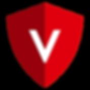 VirtualSAFE_Logo.png