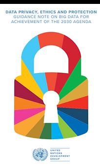 UN Data Democracy.png