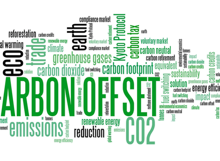 Reducing our Carbon Footprint: Part 2
