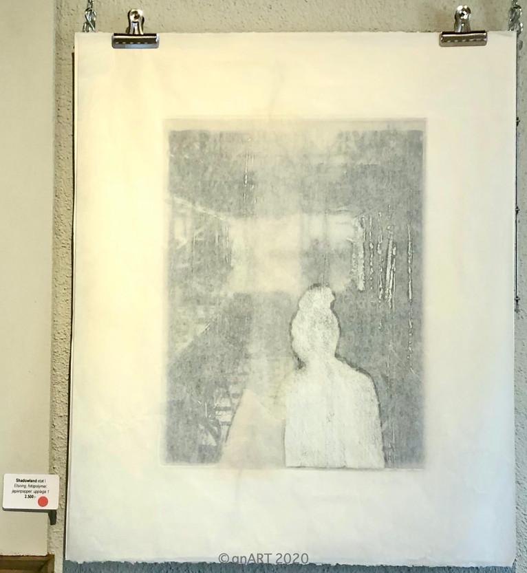 """Shadowland etat I"" w Minomitre paper"