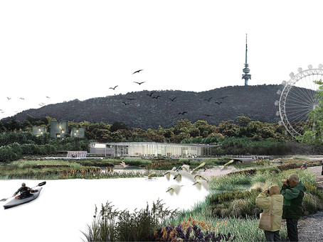 AILA Competition Entry