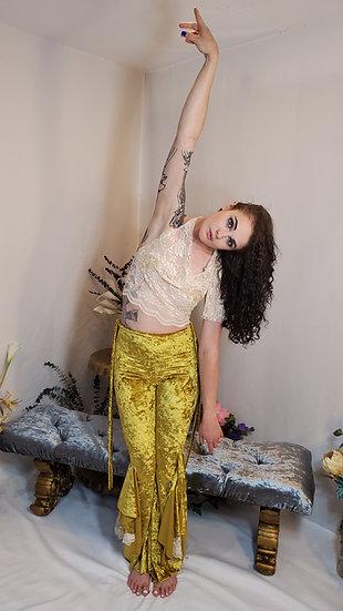 Regal Golden Cream Lace Crop Top