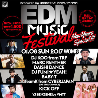 EDM MUSIC FESTIVAL New Years Special 2017