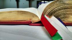 Open Book_WEB