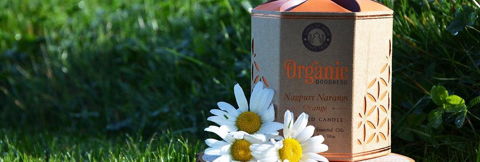 Soy candle Organic Goodness, Nagpuri Narangi Orange, in glass jar