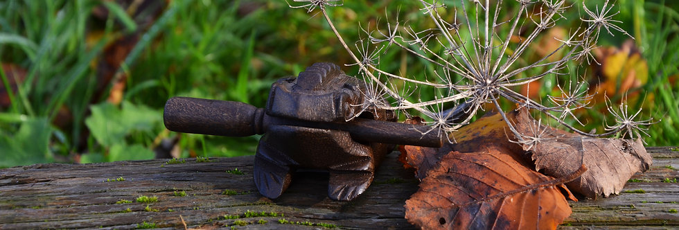 Musical Frog
