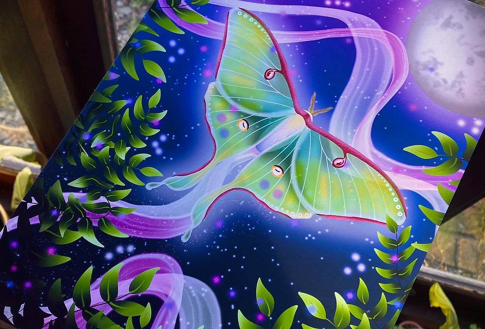 Luna Moth Art Prints