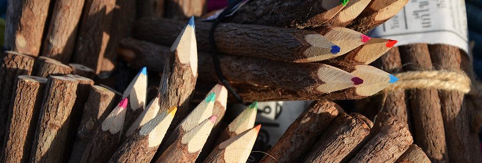 Pack of 10 Large Tamarind Twig Colour Pencils