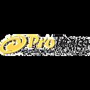 Pro-Team-logo-300x62.jpg-copy.png